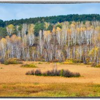 насыщенность красок осени :: Евгений Фролов