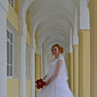 Невеста-незнакомка :: Николай Варламов