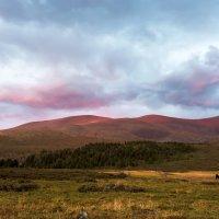 Красные горы Алтая. :: Ирина Токарева