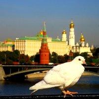 О тебе Москва ! :: олег свирский