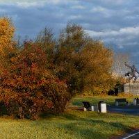 Осенним утром в парке. :: Виктор Иванович