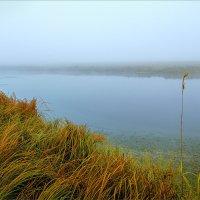 Осень, утро туманное... :: Александр Никитинский