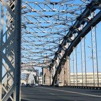 Мост Петра Великого :: Ольга Васильева