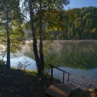 Лесенка  к воде :: Анатолий Иргл