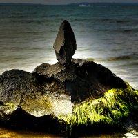 Каменный парус :: Alexander Andronik