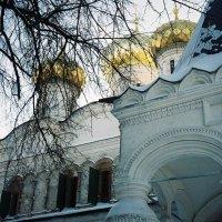 Ипатьевский монастрырь зимой :: Димончик