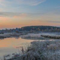 Прохладное утро :: Александр Смирнов