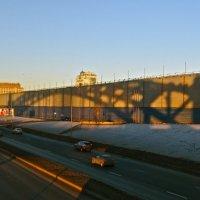 тень от Большеохтинского моста :: Елена