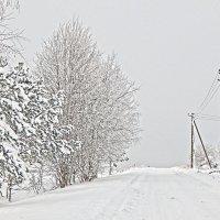 Зимний день. :: Елена Михайлова .