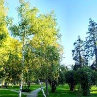 В парке :: Валерий Ткаченко