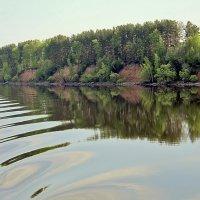 Волжские берега :: Nikolay Monahov