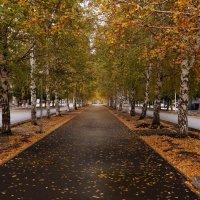 после дождя... :: Alexandr Staroverov