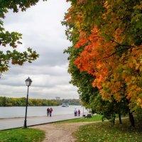 Осень в Коломенском. :: Larisa Ereshchenko