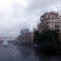 Дождь на Ленинградском проспекте :: Елена