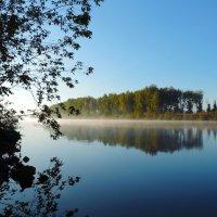 Утро на реке :: Елена Якушина