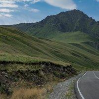 По дороге  в горы. :: Александр Сапожников