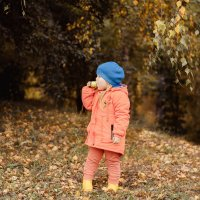 Осень :: Ирина Демидова