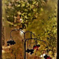 Осенний этюд :: veilins veilins