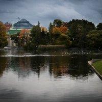 Таврический сад :: Алексей Корнеев