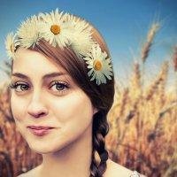 в поле с ромашками :: Alina_ Mash