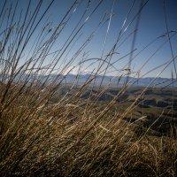 Вид на Эльбрус с плато Бермамыт :: Павел