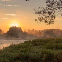 Рассвет на реке. Фото с красивой композицией :: Наталья Чистополова