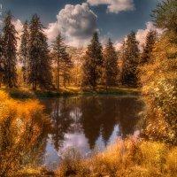 Осеннее настроение :: Татьяна Каримова