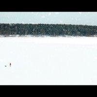 Одиночество :: Andrey Mitrofanov