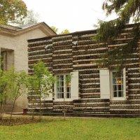 Берёзовый домик :: Вера Моисеева