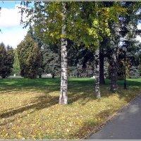 Осень в городе :: muh5257