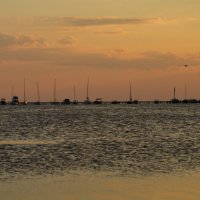 вечер в порту :: Роза Бара