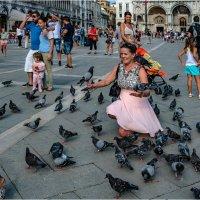 Стаи голубей - одна из визитных карточек Сан Марко :: Виктор Льготин
