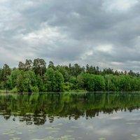У озера :: Владимир Дороненко