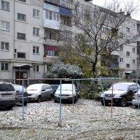 А у нас во Дворе... :: Дмитрий Петренко
