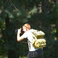 Поймать фотографа. :: Paparazzi