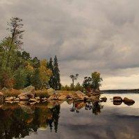 Пасмурная осень парка Монрепо :: Александр