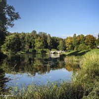 павловский парк :: юрий карпов