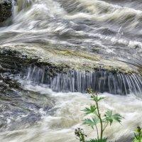 Поток таёжной реки :: юрий Амосов
