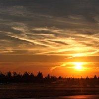 Панорама отравленного химтрейлами неба над Шумилино :: Анатолий Клепешнёв