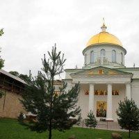 Псково-Печерский монастырь. :: tatiana