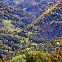 Осень золотая :: Alexandеr P