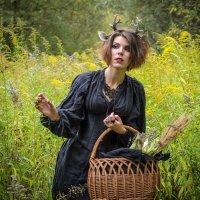 Золотая осень и эльф :: Татьяна Симонова