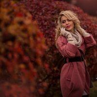 Осень :: Анна Локост