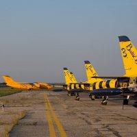 Ан-148 на разбеге и хвосты Балтийских пчелок :: Елена Primavera