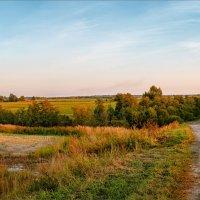 Осень... вечер... деревня... :: Александр Никитинский