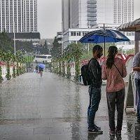 Дождь в Измайлово. :: Александр Бабаев