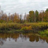 Осень на Ямале. :: Леонид Балатский