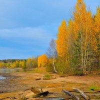 Золотая осень-2. :: Александр Зуев