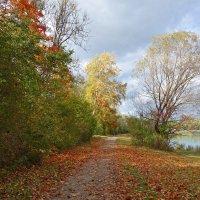 Эта теплая винная осень Опьяняет своей красотой... :: Galina Dzubina