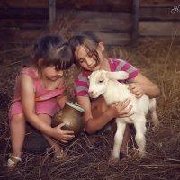 В деревне у бабушки.. :: Наталья Отраднова